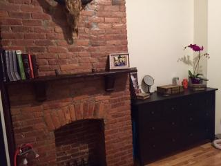 Huge Beautiful Duplex with Backyard and Hammoc - Brooklyn vacation rentals