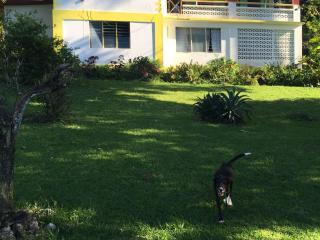 Villa Paola Jamaica - Port Antonio vacation rentals