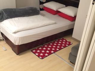 1 bedroom Condo with Internet Access in Minato - Minato vacation rentals