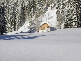 Comfortable House with Internet Access and Dishwasher - Saint Martin am Tennengebirge vacation rentals