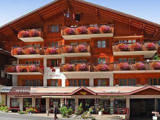 Romantic 1 bedroom Condo in Grindelwald with Internet Access - Grindelwald vacation rentals