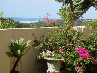 Beach, golf and nature lovers paradise - Southbroom vacation rentals
