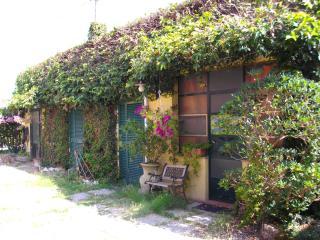 Grazioso miniappartamento a due passi da Pisa - Madonna Dell'Acqua vacation rentals