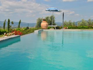 Big apartment in Tuscany with pool and wifi - Creti vacation rentals