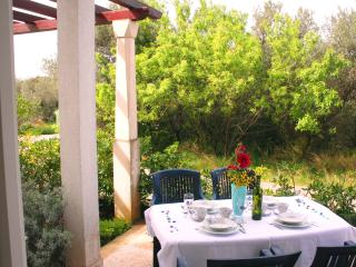 Comfortable apt, 8 sqm terrace, 300m from beach - Supetar vacation rentals