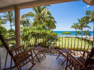 Beachfront Living at Its Finest! - Playa Potrero vacation rentals