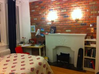 Charming and comfortable in the heart of downtown - Montreal vacation rentals