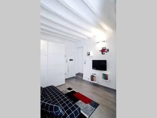 PierVettori Studio - Florence vacation rentals
