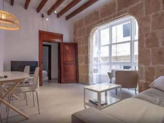 Huge apartment with terrace in old town - Palma de Mallorca vacation rentals