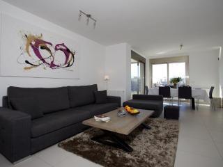 Nice 3 bedroom Condo in Ibiza Town - Ibiza Town vacation rentals
