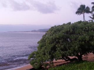 30 Steps to the Beach, Sleeps 4 - Kapaa vacation rentals