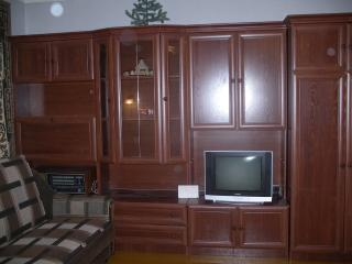 Nice House with Internet Access and Wireless Internet - Sislovodsk vacation rentals