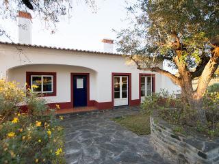 Lake House - In a beautiful Alentejo lot - Reguengos de Monsaraz vacation rentals