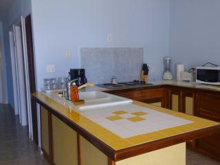Nice Condo with Internet Access and Dishwasher - Placencia vacation rentals