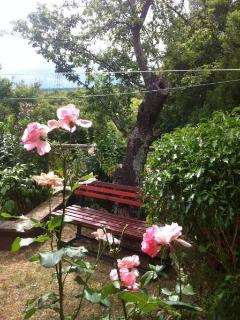 Cozy 2 bedroom Krsan House with Internet Access - Krsan vacation rentals