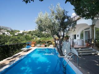 6 bedroom Villa with Television in Ischia Porto - Ischia Porto vacation rentals