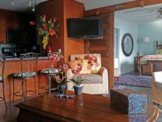 High-End 2 Bed/2 Bath Double Balcony Oceanview - Kihei vacation rentals