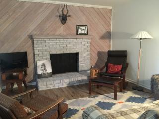 Bungalow 207 - close to downtown - Hendersonville vacation rentals