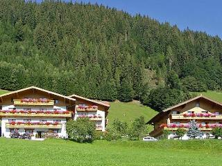 Bright Condo with Internet Access and Dishwasher - Flachau vacation rentals