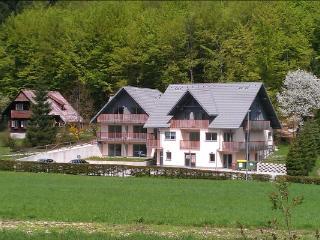Bohinjko Apartment - Lake Bohinj Accommodation - Bohinjsko Jezero vacation rentals