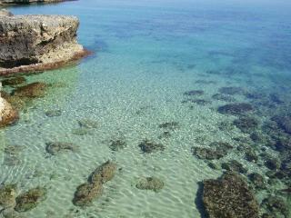 Vacanza  a pochi passi dal mare - Ostuni vacation rentals