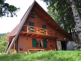 Chalet Alpinka 1 - at 1500m on Krvavec mountain - Begunje na Gorenjskem vacation rentals
