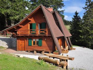 Chalet Alpinka 2 - at 1500m on Krvavec mountain - Begunje na Gorenjskem vacation rentals