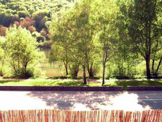 Wohnen im Weingut Clemens-Ferdinand - Ediger-Eller vacation rentals