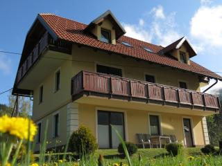 Villa Planina in Kranjska Gora - Ground Floor - Ratece vacation rentals