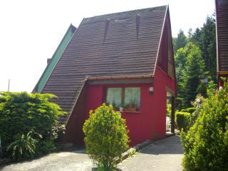 Gîte Pinot Noir à KAYSERBSERG,wifi, parking, - Kaysersberg vacation rentals