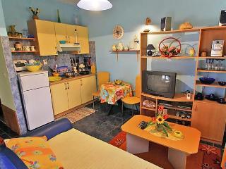 Sunny 1 bedroom Condo in Kneza - Kneza vacation rentals