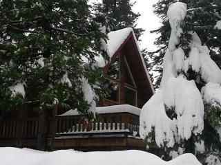 Heinrichs House - Upscale Mountain Retreat, 4 bedroom, 3.5 bath, sleeps 12. - Dorrington vacation rentals