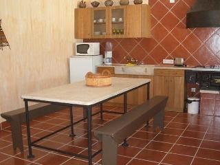 Comfortable 4 bedroom House in Rio Maior - Rio Maior vacation rentals
