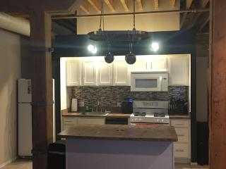 Perfect loft in the heart of downtown Chicago - Chicago vacation rentals