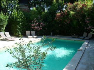 A Avignon Paradise, maison atypique fin XIXeme - Avignon vacation rentals