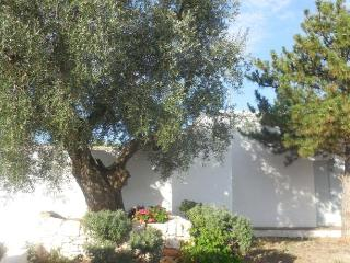 1 bedroom Bed and Breakfast with Internet Access in Speziale - Speziale vacation rentals