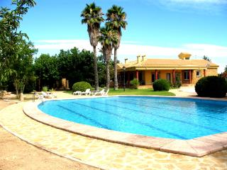 Lovely Villa with Internet Access and DVD Player - Aspe vacation rentals