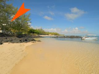 Bambouville on the beach; great for kite surfers! - Roches Noire vacation rentals