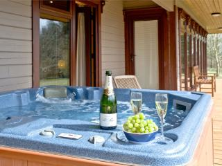 Oak Lodge, Forest Lakes located in Bideford, Devon - Bideford vacation rentals