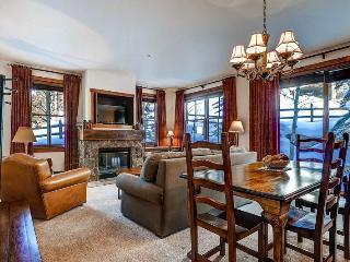 Lovely Breckenridge 2 Bedroom Free shuttle to lift - MJ16 - Breckenridge vacation rentals