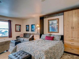 Affordable Breckenridge Studio Ski-in - RE205 - Breckenridge vacation rentals