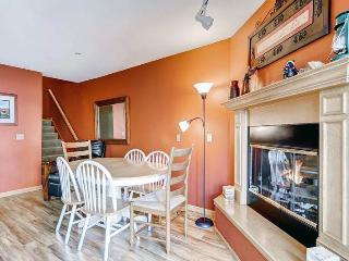 Inviting Breckenridge 2 Bedroom Ski-in - RW320 - Breckenridge vacation rentals