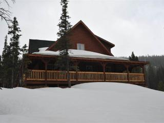 Convenient Secluded 4 Bedroom Private Home - 151 Mountain Kingdom Road - Breckenridge vacation rentals