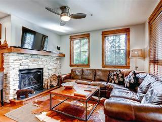 Wonderful yes 2 Bedroom Condo - B201 - Breckenridge vacation rentals