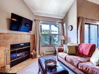 Adorable  1 Bedroom  - 1243-92913 - Breckenridge vacation rentals