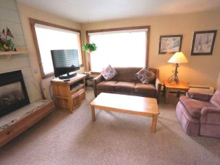 Economically Priced  1 Bedroom  - 1243-21369 - Breckenridge vacation rentals