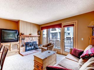 Adorable  1 Bedroom  - 1243-94195 - Breckenridge vacation rentals