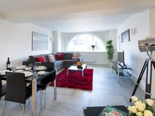 Shoreditch One - Two Bedroom Apt 2 - London vacation rentals