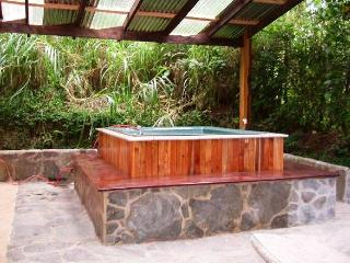 Hot Tub and High Speed WiFi. Walk to the Reserve! - Monteverde Cloud Forest Reserve vacation rentals