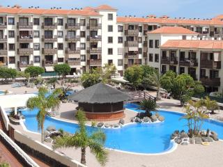 Nice Condo with Internet Access and Elevator Access - Costa del Silencio vacation rentals